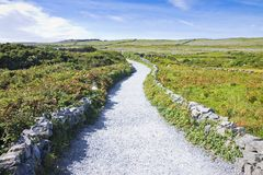 Typical Irish flat landscape in Aran Island with country road, s. Tone walls and fields of grass for grazing animals Ireland Stock Image