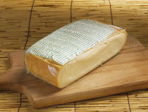 Typical italian cheese taleggio Royalty Free Stock Photos