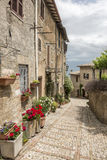 Typical italian city street Stock Photography