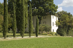 Typical Italian house with cypresses. Italian house with a lane with cypresses Stock Images