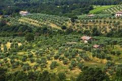 Typical Italian Landscape Stock Photo