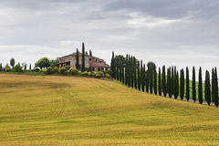 Typical Italian Landscape in Tuscany Stock Images