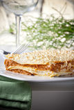Typical Italian Lasagna Royalty Free Stock Photos