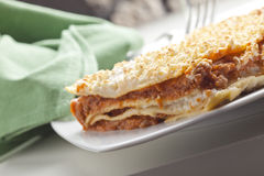 Typical Italian Lasagna Stock Image