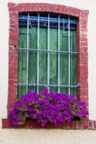 Typical italian window  with pot petunia flowers Royalty Free Stock Images