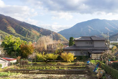 Typical Japanese style house in the suburb at the fall. Yamanashi, Japan - November 21,2014 : Typical Japanese style house at the fall in the suburb of Yamanashi Stock Photos