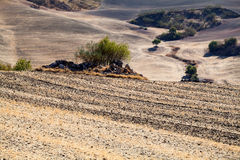 Typical landscape in Andalucia Royalty Free Stock Photo