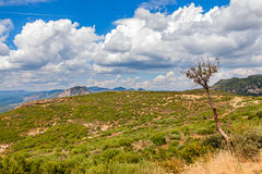 Typical landscape in Aragon Stock Photo