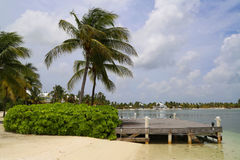 Typical landscape at Caiman Islands Stock Image
