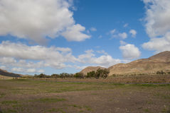 Typical Landscape on Canary Island Stock Photography