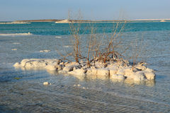 Typical landscape of the dead sea, Israel Stock Images