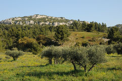 Typical landscape of Les Baux de Provence in Provence Royalty Free Stock Photos