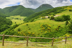 Typical landscape in Marche Stock Images