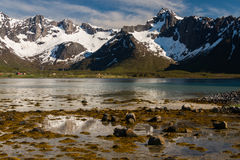 Typical landscape of norway Stock Image