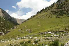 Typical landscape in Pamir-alay mountains Royalty Free Stock Photos