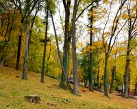Typical landscape in the plains and forests of Transylvania, Romania, Autumn characteristic colors Royalty Free Stock Image
