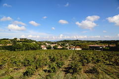 Typical landscape in Provence , France with vineyard and small village Stock Image