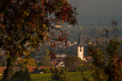 Typical landscape Rhenish Pfalz Stock Images