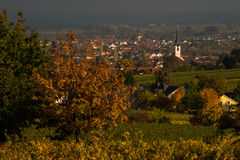 Typical landscape Rhenish Pfalz Royalty Free Stock Photos