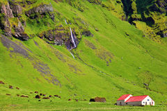 Typical landscape for the summer in Iceland Royalty Free Stock Photos