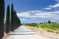 Typical landscape of Tuscany Stock Images