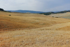Typical landscape in Tuscany, farmhouse on the hills of Val d'Or Royalty Free Stock Images
