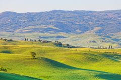 Typical landscape of Tuscany Stock Image