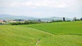 Typical landscape of Tuscany. With hills and the grass waving on a wind stock video footage