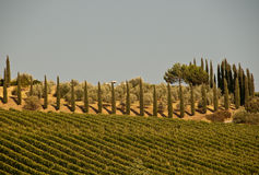 A typical landscape in Tuscany, Italy Stock Photos
