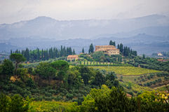 Typical landscape in the Tuscany. Royalty Free Stock Image