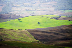 Typical landscape in the Tuscany. Stock Image