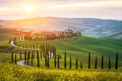 Typical landscape in Tuscany - winding road lined with cypress trees in the green meadows and fields. Sunset in Italy stock photo