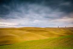 Typical landscape in Val D'Orcia Royalty Free Stock Images