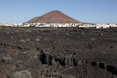 Typical Lanzarote landscape Stock Photography