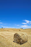 Typical Mediterranean landscape from Alentejo Royalty Free Stock Photography