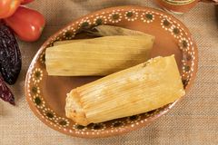 Typical Mexican cuisine. Typical Mexican food dishes with sauces on colorful table. Tamales of red and green mole. Guadalajara Mexico royalty free stock images