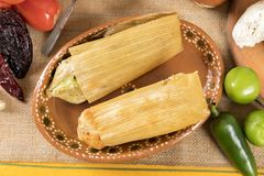 Typical Mexican cuisine. Typical Mexican food dishes with sauces on colorful table. Tamales of red and green mole. Guadalajara Mexico Royalty Free Stock Photo