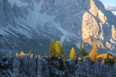 Typical mountain landscape in the Dolomites in Italy Stock Photography