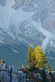 Typical mountain landscape in the Dolomites in Italy Stock Photos