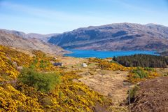 Typical mountain landscape in spring near Durnes, Northern Highlands, Scotland, UK Royalty Free Stock Image