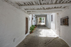 Typical narrow street with plantpots in Capileira Stock Photo
