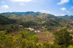Typical nature on La Gomera. Canary, Islands, Spain stock images