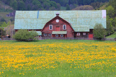 Typical new england farm Royalty Free Stock Images