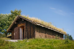 Typical norwegian building with grass on the roof Stock Photography