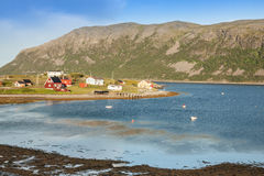 Typical Norwegian fishing village with traditional red rorbu hut Royalty Free Stock Images