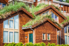 Typical norwegian house with grass on the roof Stock Photography