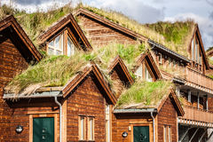 Typical norwegian house with grass on the roof Stock Images
