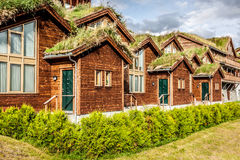 Typical norwegian house with grass on the roof Stock Photos