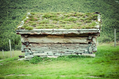 Typical Norwegian house with grass on the rooftop Royalty Free Stock Images