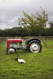 Typical old british farmyard scene Royalty Free Stock Photos